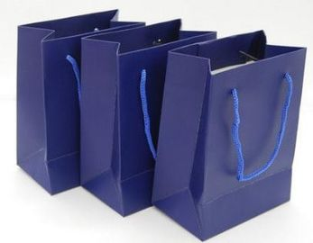 China Custom Printed Paper Gift Bags With Handles , Colored Paper Packaging Bags supplier