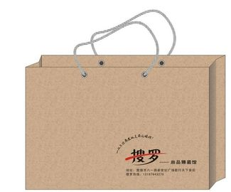 Fashion Printed Paper Shopping Bags / Paper Gift Bags With Company Logo